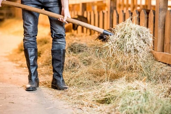 How To Care for Barn Boots for Longer Use?