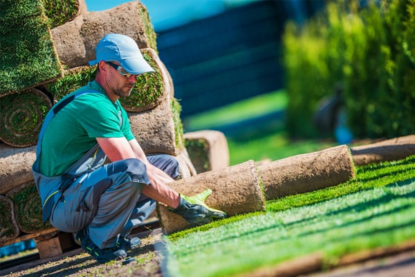 Top 10 The Best Work Boots For Landscaping Review In 2020 12