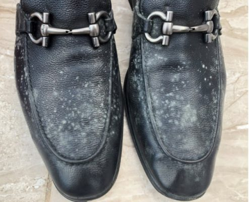 What Causes Mold on Leather Shoes?